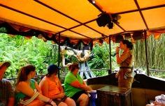1.1434118989.ou-jungle-guide