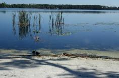 1.1436216019.lake-bryan