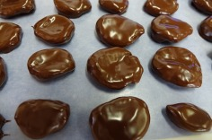 4.1442080404.chocolate-covered-apricots