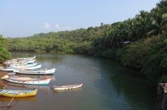 5.1453655185.fishing-creek-near-agonda