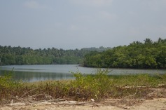 5.1454690071.the-salt-water-estuary-behind-turtle-beachh