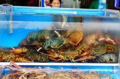 3.1458911042.fish-market-lobsters