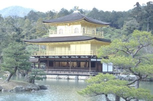 3.1459193119.1-golden-pavilion