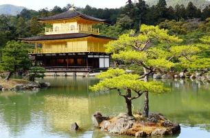 3.1459193119.the-golden-pavilion