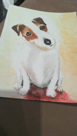 3.1459881911.my-jack-russell